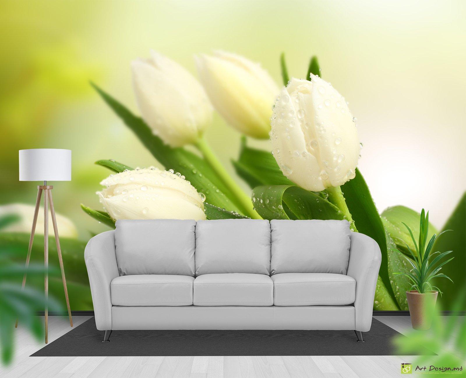 Фотообои с белыми тюльпанами